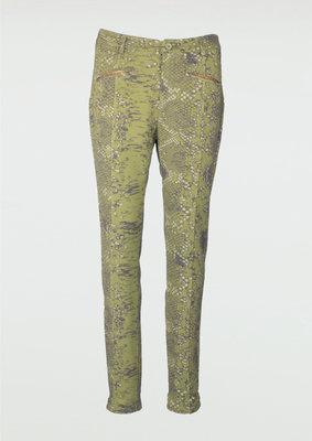 Printed Jogger Pants